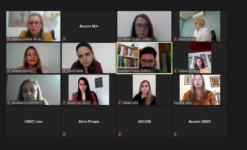 Imagem Audiência Pública discute direitos da gestante no período de pandemia