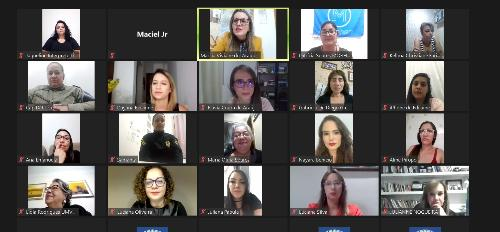 Imagem Câmara realiza audiência pública em apoio à campanha nacional do Levante Feminista contra o feminicídio