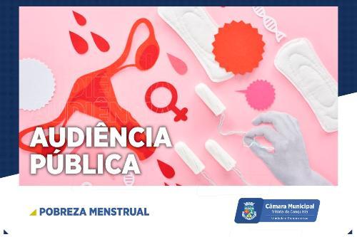Imagem Pobreza Menstrual é tema de audiência pública na Câmara Municipal