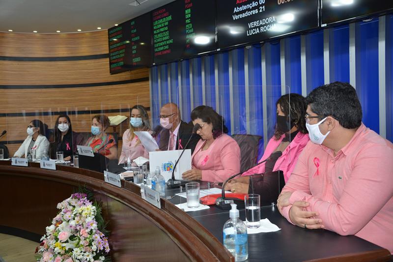 Imagem Outubro Rosa é tema de Sessão Especial na Câmara