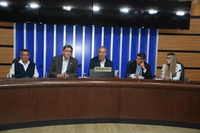 Imagem Audiência Pública debate políticas públicas que facilitem inserção de produtos locais no comércio